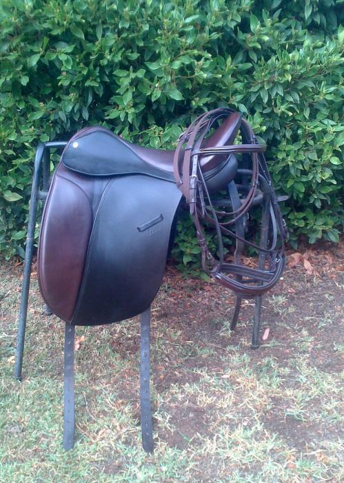 "17"" Icon Dressage Show Saddle + Bridle"