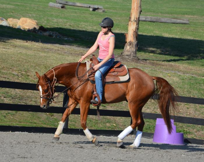 Athletic 3yo QH Gelding