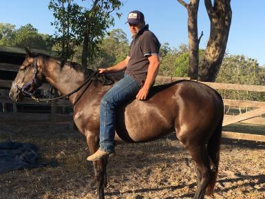 I will look good under saddle