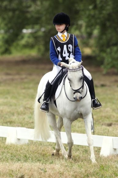 Mentone horse trials dressage 1st place 2013