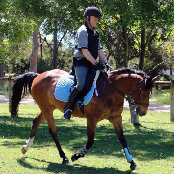 Stunning Forward Moving Pony