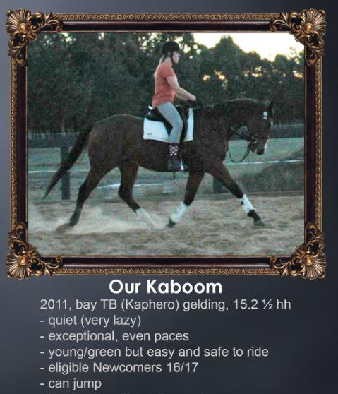 Our Kaboom PRICE REDUCED