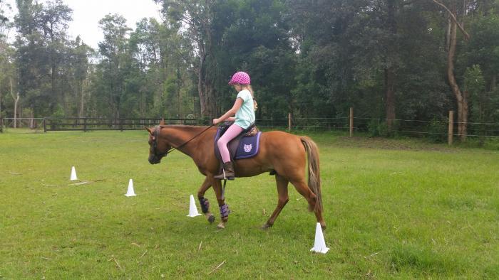 Beginners pony