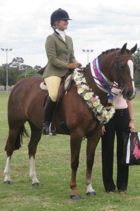 Champion Show Hunter Galloway and fun all rounder