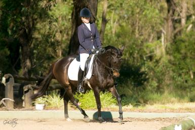NSW AHA Dressage Day 28/5/17 Credit Foxwood Photography
