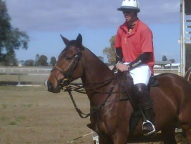 Coco - by same sire - playing polo