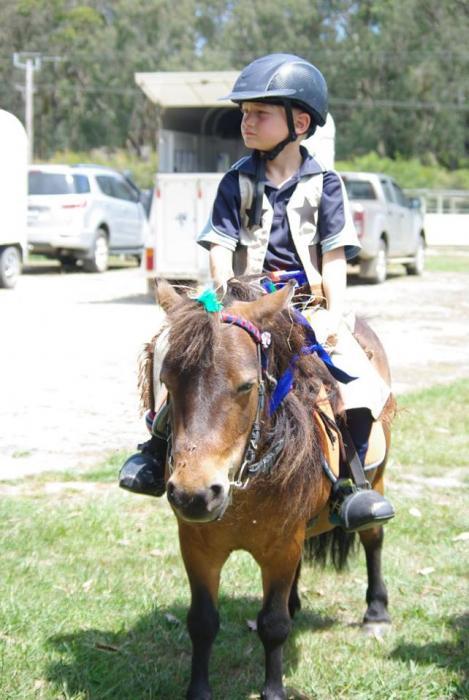 Perfect beginners pony
