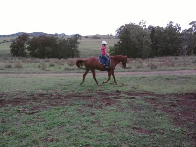 Ridden by 10yo girl