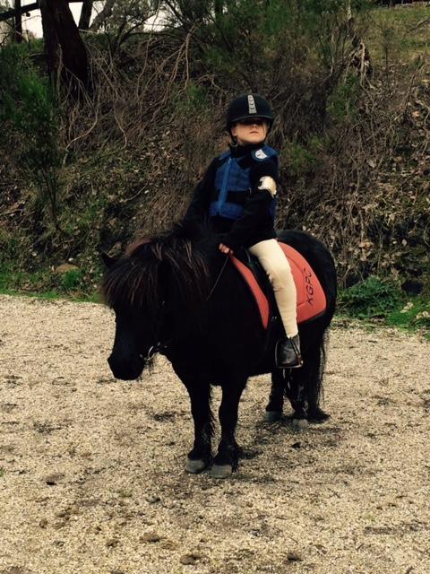Child's Shetland Pony 'Little Miss Money Penny'