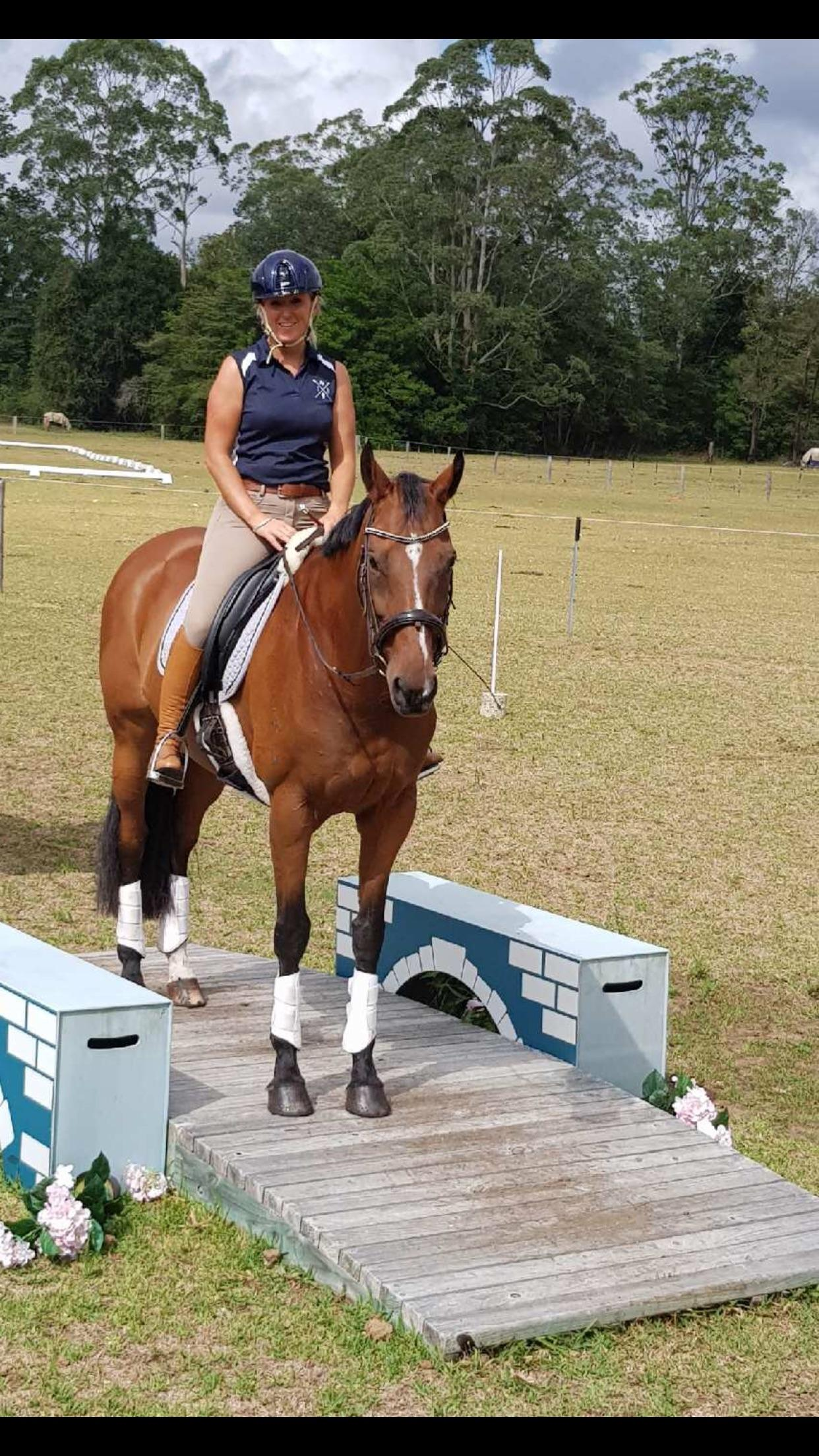 Lovely Moving Dressage Mare