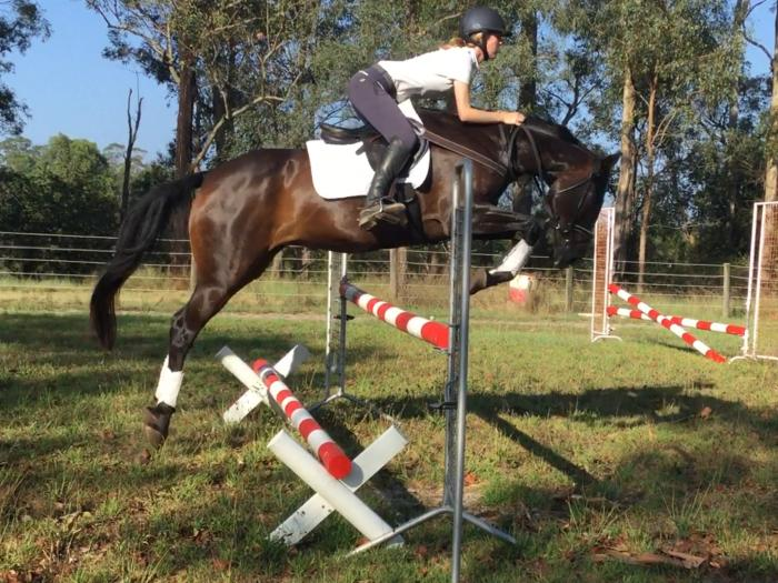 Talented Young Jumper