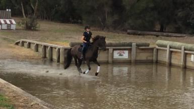 Cross Country Water Jump