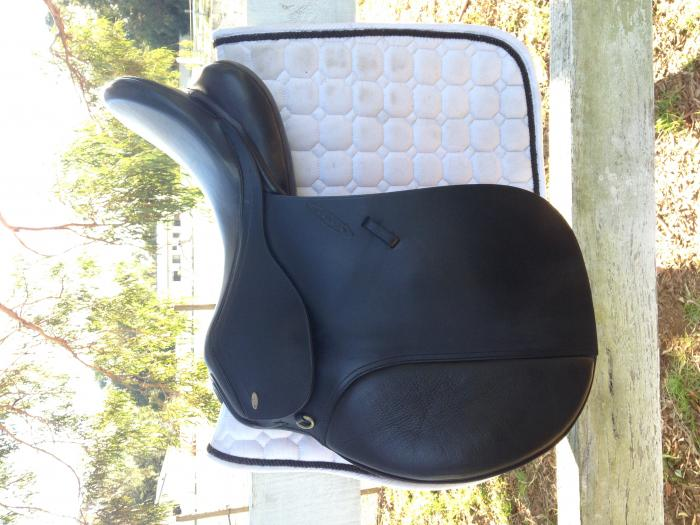 "17""5 Black Grange All Purpose Saddle"