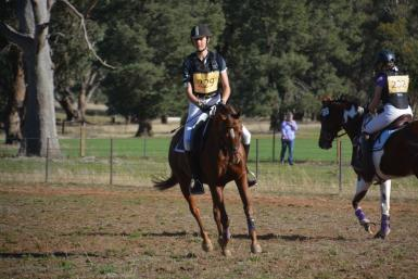Wagga Wagga horse trials