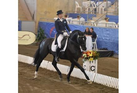 Fiji R Service Fee - Young Dressage