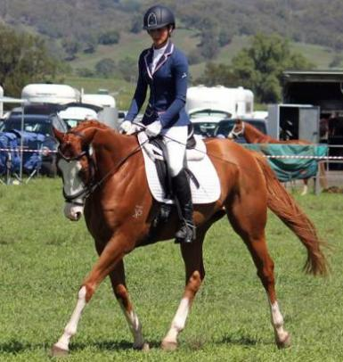 Scone Horse Trial 2014