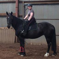 Grace - Safe, beginners allrounder