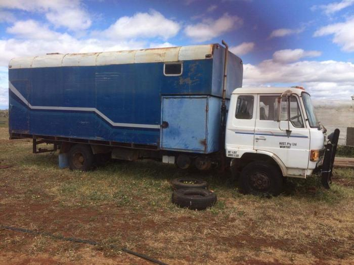 Hino 5 horse truck 1985 model with living