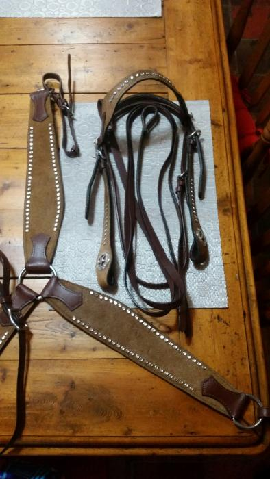 Western Leather bridle and breastplate