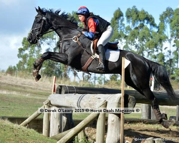 Uncomplicated and honest ARC/PC eventer