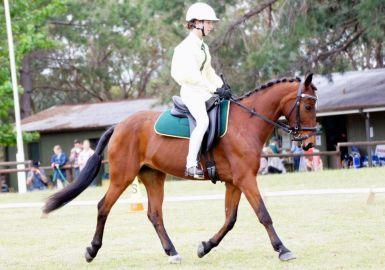 2012 Zone 23 Prelim Champion
