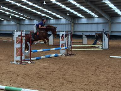Showjumping Lesson