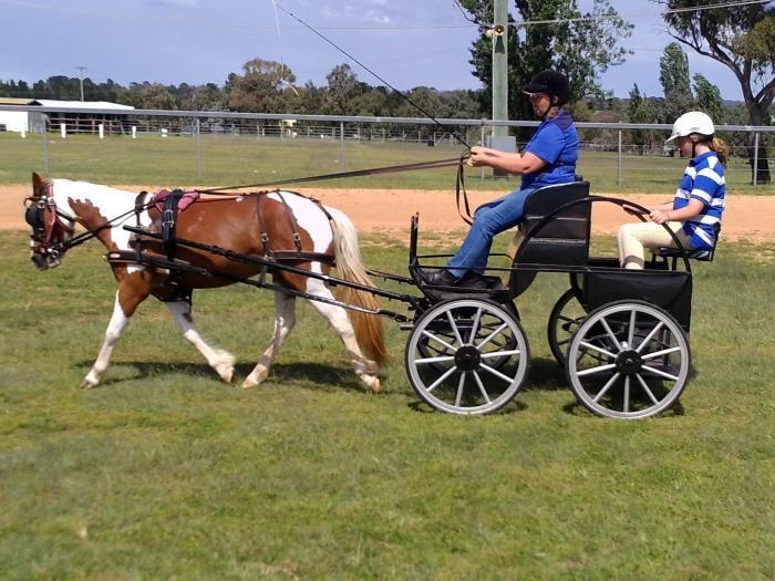 CDE 4-Wheeler Carriage