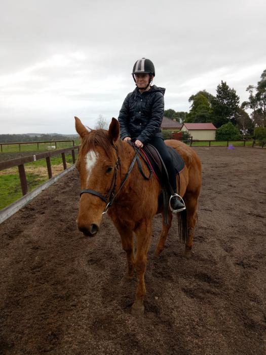 Small TB mare