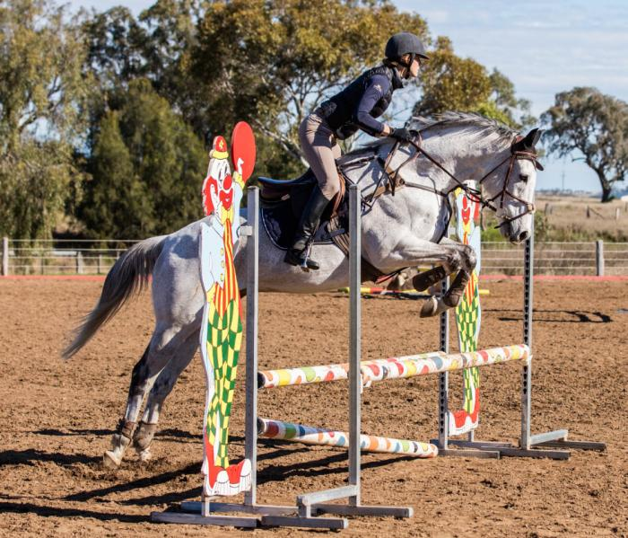 Bold and Courageous Eventer