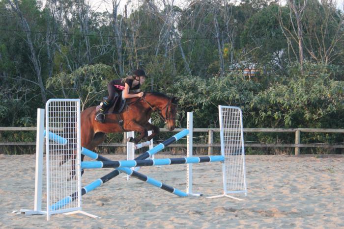 Forward Moving Jumping Pony