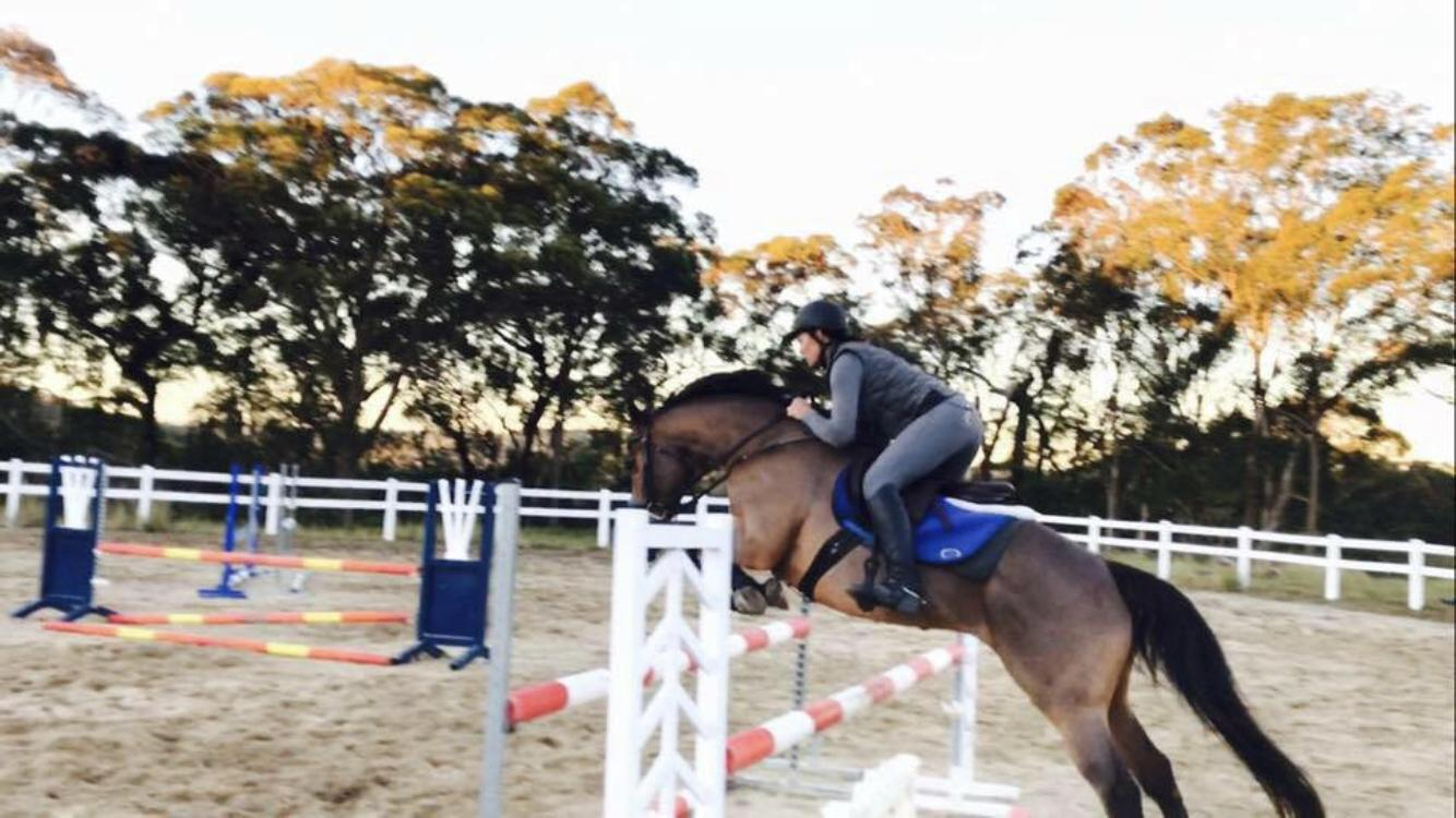Talented and brave showjumper