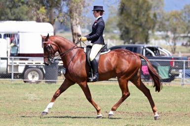 Top 10 Rider 17-21 years - NSW SHC HOTY (Lorelle Mercer)