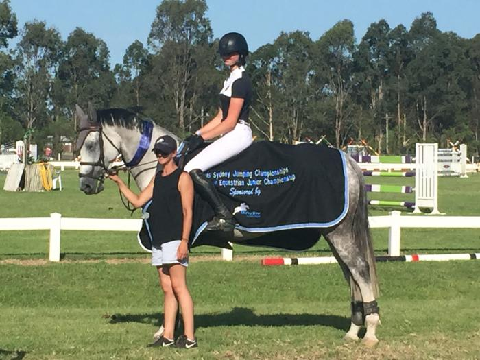 Competitive, Careful Showjumping WB mare,16hh