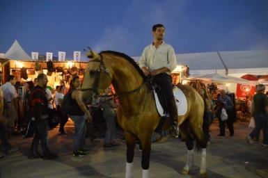 Celere - riding throught night markets (Potugal)