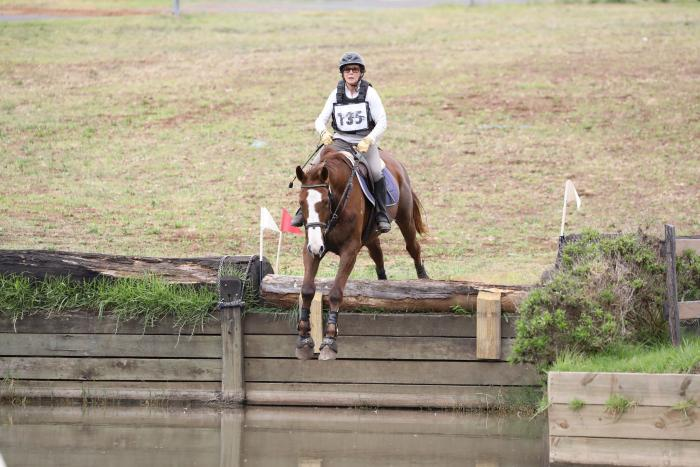 showjump/eventer