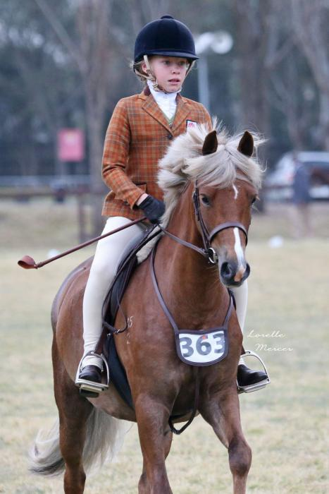 Top Interschool and Show Prospect