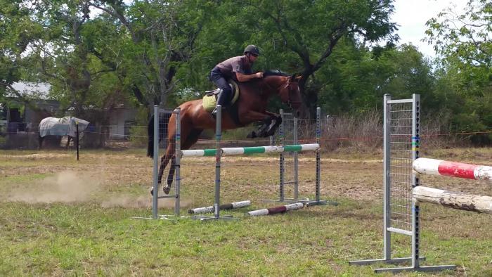 Careful and Bold Vivant Jumper