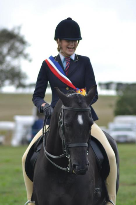Calm schoolmaster perfect mount for young rider