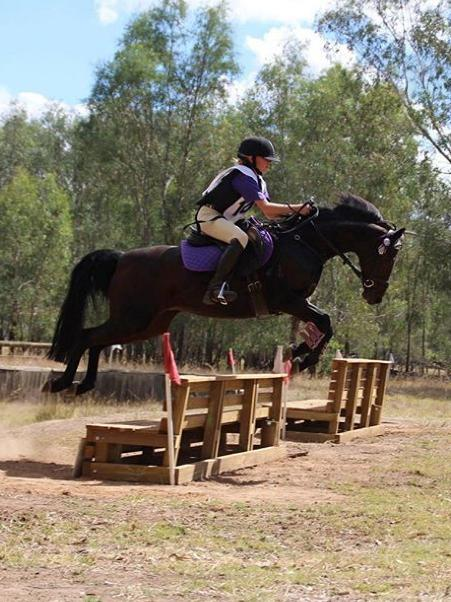 Stunning all round 13.2hh riding pony