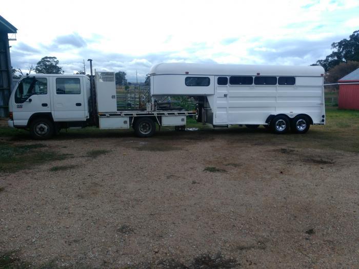 Bueno 4 horse Gooseneck and Isuzu NPR400 Truck