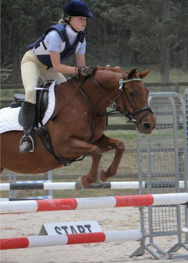 Zara Jumping Shiubim 2012