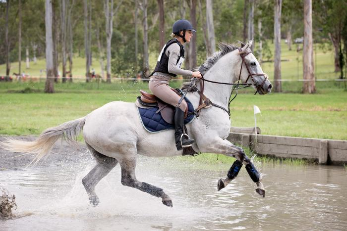 Progressive Eventer with Potential
