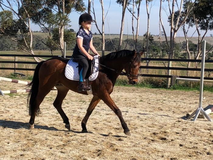 junior rider deluxe