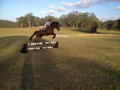 Will Jumping Feb 2013