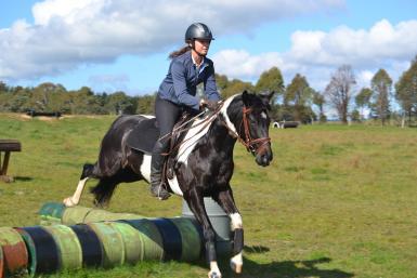 Berrima cross country training