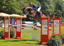 Casallco jump