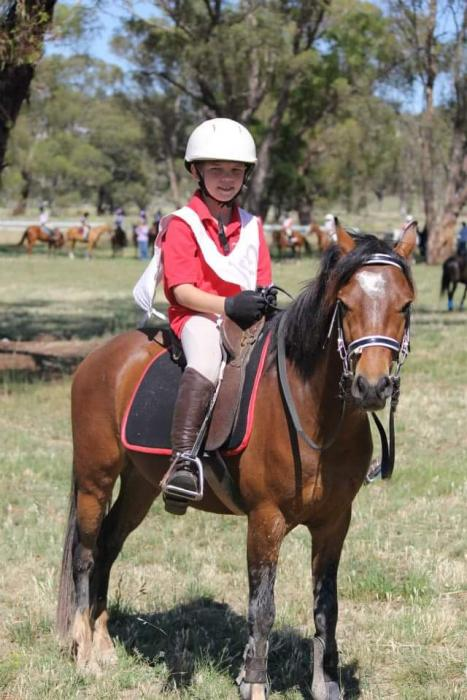 Fantastic Pony Club Allrounder