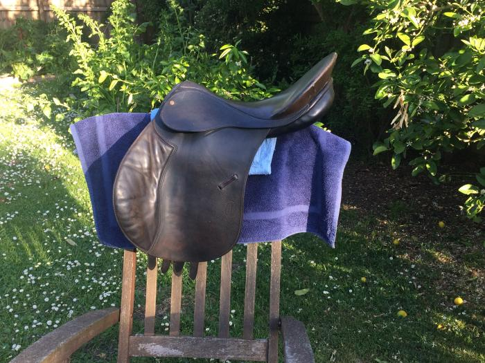 Bates Caprilli general purpose saddle