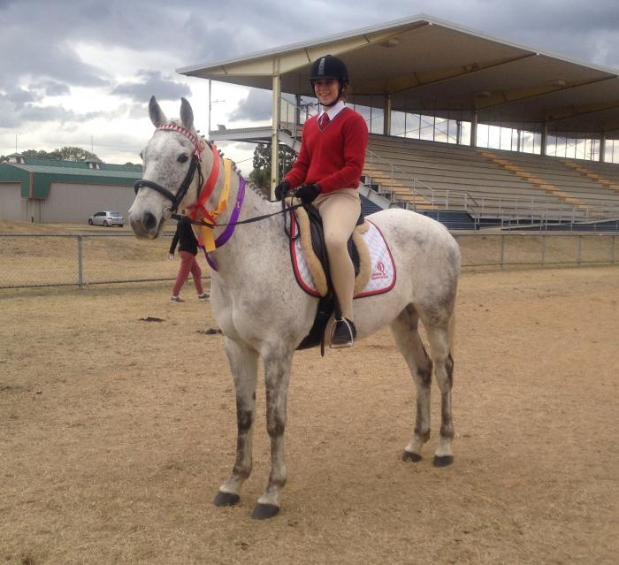 ULTIMATE PONY CLUB CHAMPION - GREAT ALLROUNDER