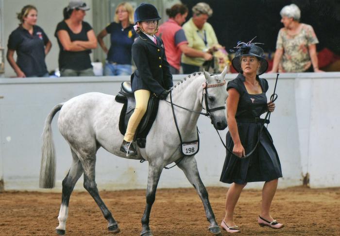 Childs Pony